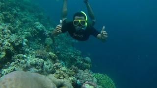 Wisata Bawah Laut Taman Nasional Baluran