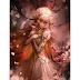 As lágrimas da rosa