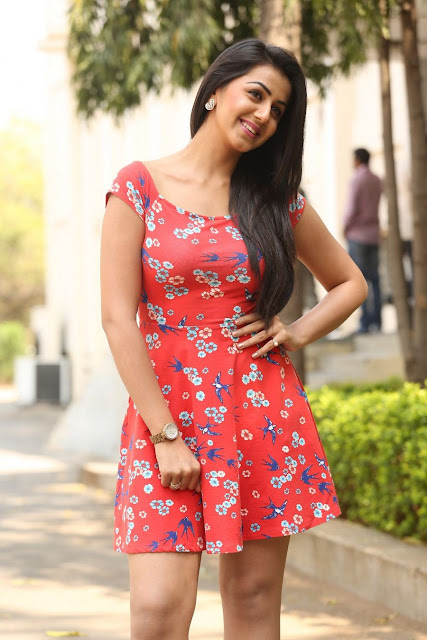 Nikki Galrani cute pictures