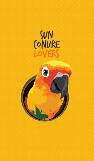 Sun Conure Lovers