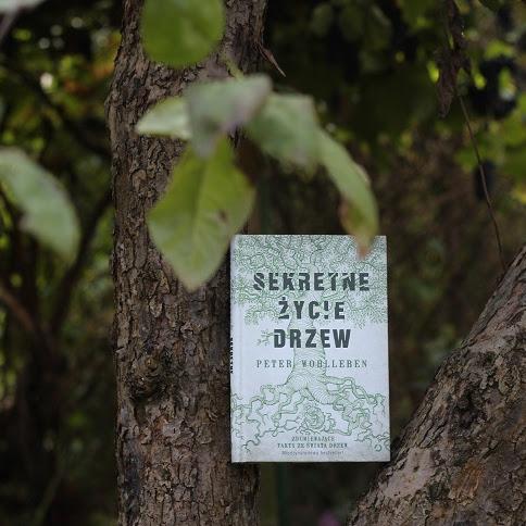 """Kilka słów o książce """"Sekretne życie drzew"""" i konkurs"""