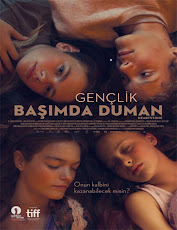 pelicula Heartstone (2016)