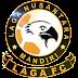 Jadwal & Hasil Laga FC 2017