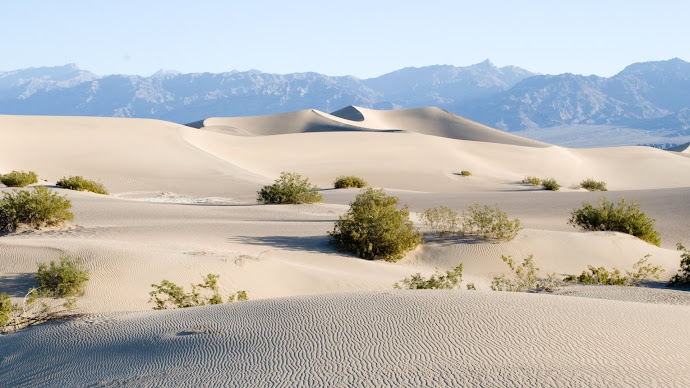 Wallpaper: Sand Dunes in Death Valley