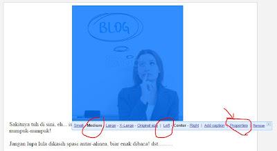 Properti Gambar SEO Postingan Blog