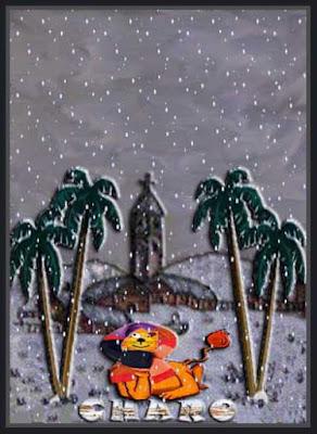 Palmeras de nieve pelicula