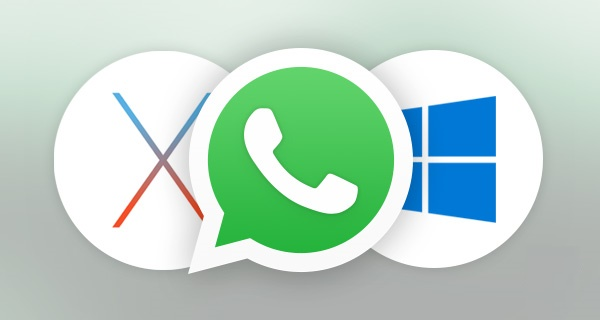 تحميل برنامج واتس اب للكمبيوتر مجاناً برابط مباشر Whatsapp Computer