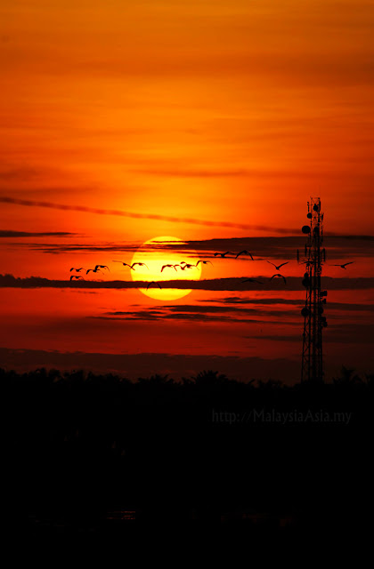 Selangor Sunset Picture