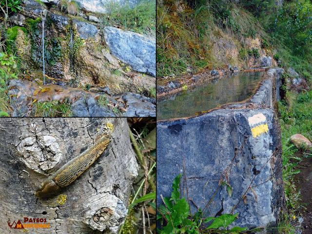 Desfiladero de Los Arrudos: Fuente Agualmayu
