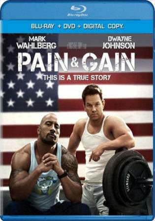 Pain and Gain 2013 BluRay 400MB Hindi Dual Audio 480p