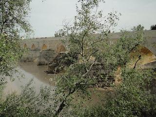 Camino, Córdoba