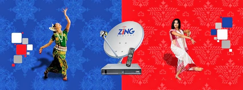 ELECTRONICS TRICKS AND TIPS: ZING DIGITAL SMS SERVICES