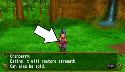 Cara Mendapatkan Buah-buahan di Harvest Moon: Hero of Leaf Valley