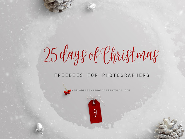 25 Days of Christmas Freebies for Photographers - Day 9th
