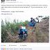 Program Astra Adopsi Pohon Gaharu, Antara Mengusir Gendruwo dan Memanen Emas