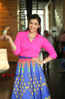 Actress Mannar Chopra in Pink Top and Blue Skirt at Rogue movie Interview  0059.JPG