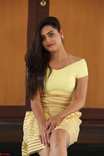 Shipra gaur in V Neck short Yellow Dress ~  006.JPG