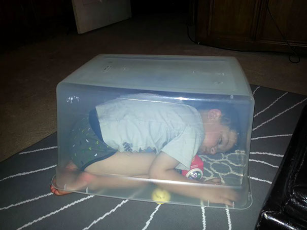 15+ Hilarious Pics That Prove Kids Can Sleep Anywhere - Napping Under The Box