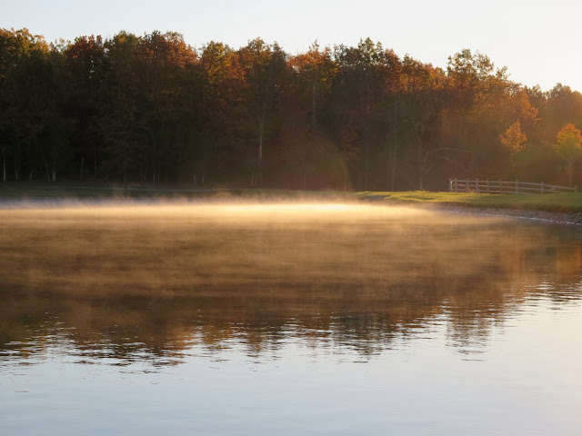 Mist on the Lake
