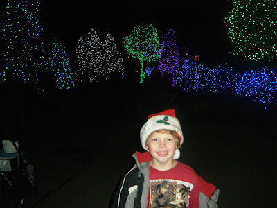Toledo Zoo Christmas Lights