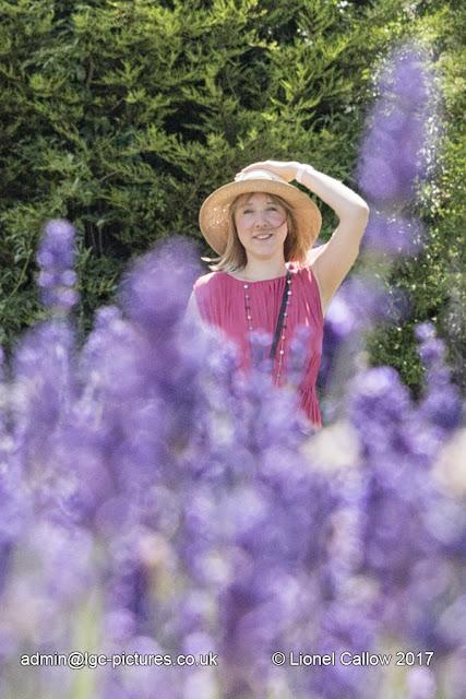 Lavender portrait