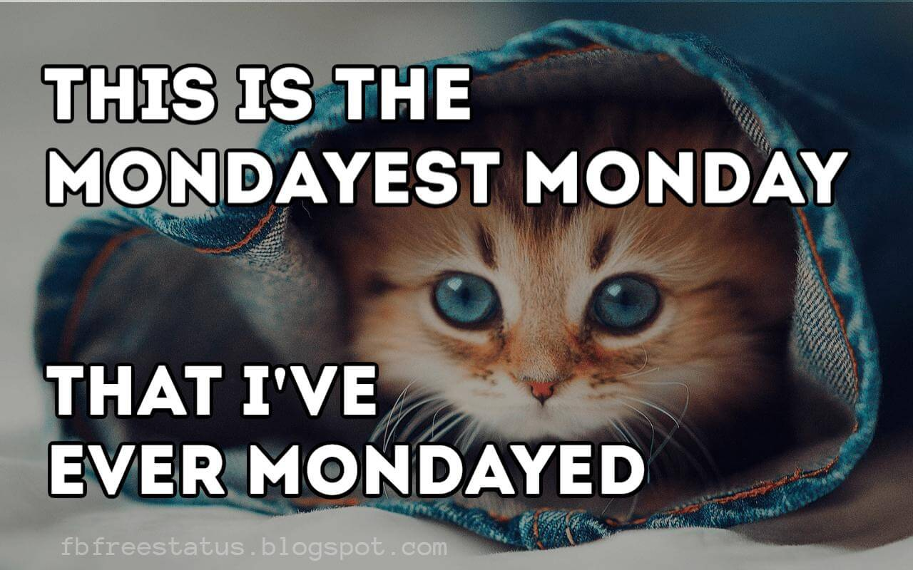 Monday Quotes: Funny & Inspirational Monday Morning Quotes With Images