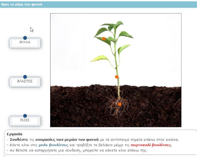 δημοφιλέστερες ιστοσελίδες γνωριμιών Βραζιλία