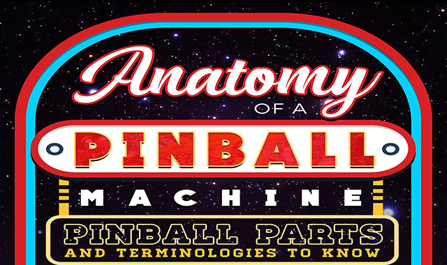 Anatomy Of A Pinball Machine: Pinball Parts And Terminologies To Know