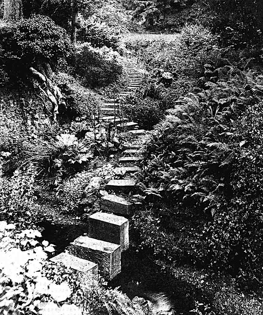 Photograph of rock garden stairs 1911