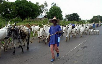 FG and Govs agree to establish ranches to resolve clashes between Farmers and Fulani Herdsmen