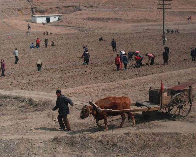 """Assentamento de reforma agrária: regime """"montou"""" as melhores cenas que conseguiu"""