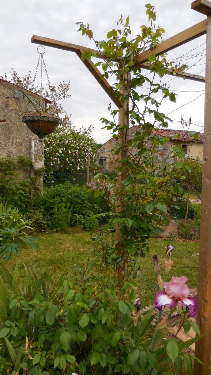 Cagouille 39 s garden petit tour de jardin - Petit jardin plan de la tour tours ...