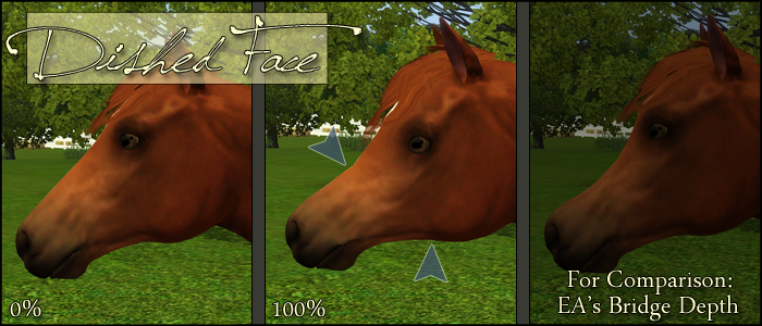 Heather's Sliders [Anti-Derp Eyes Set 9/27] | Equus-Sims Forum