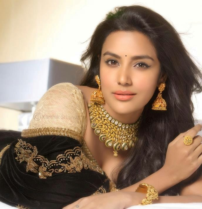 Priya Gold Pogo Mixer Grinder Silver