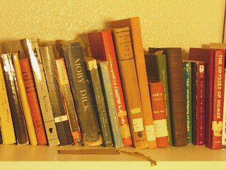 A photo of a shelf of books edited to look like it has been painted on a canvas.