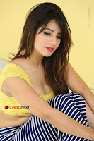 Cute Telugu Actress Shunaya Solanki High Definition Spicy Pos in Yellow Top and Skirt  0412.JPG