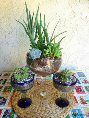 สวนขวดแก้ว