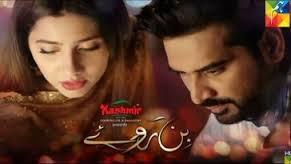 bin roye, bin roye watch online, bin roye download, bin roye all episodes, Bin roye all episodes in hd, bin roye full hd, bin roye full drama