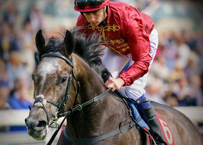 Qatar horse racing (Redcar)