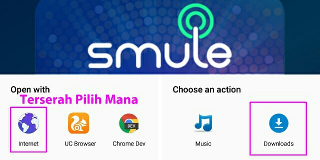 Download video/audio Smule