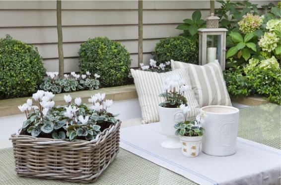 Candele bianche da giardino : Candele profumate e colorate conforama