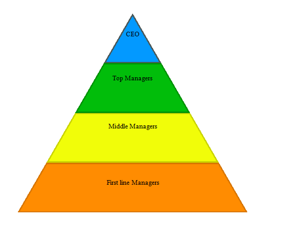 4 levels of management