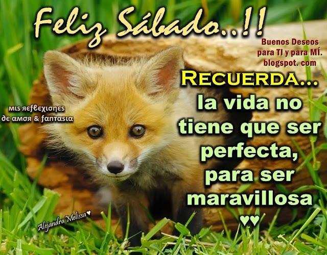 FELIZ SÁBADO !!  RECUERDA: La vida no tiene que ser perfecta, para ser maravillosa...