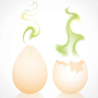 معرفة البيضة الفاسدة و الطازجة و طرق اختبارها و التأكد من صلاحيتها