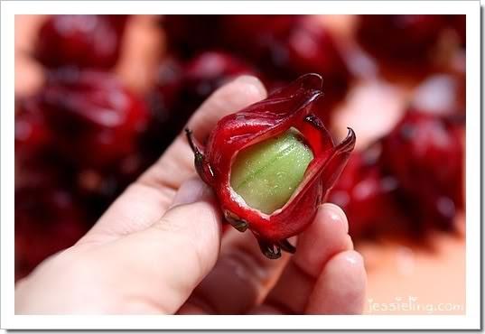 hibiscus ngọtt ngào