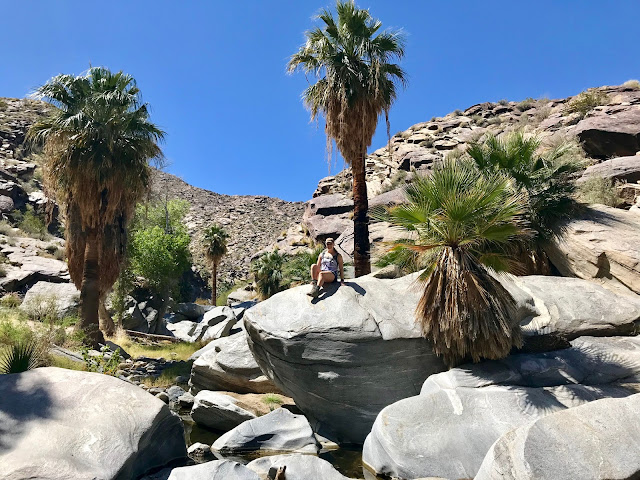 Indian Canyon hiking Palm Springs, Palm Canyon Trail at Indian Springs, East Fork Trail