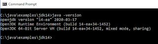"JDK 14/JEP 305 instanceof Pattern Matching ""Smart Casts"""