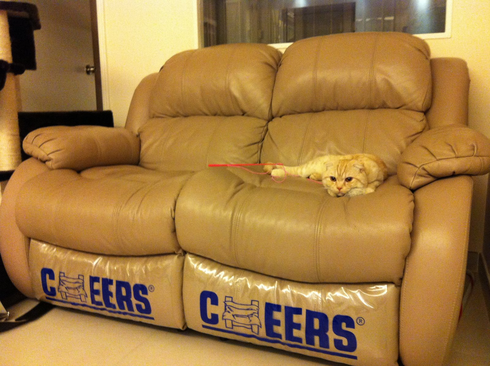 Cheers Sofa Cheers Sofa 5185m L3 2e Phr Dual Motion With