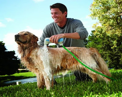 Hydrosurge Rapidbath For Dogs