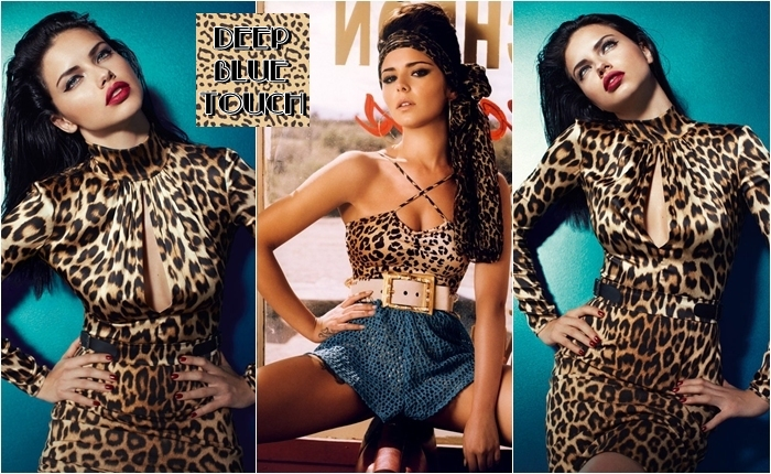celebrities in leopard print outfits